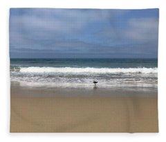 Seagull On The Beach Fleece Blanket