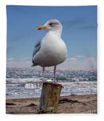 Seagull On The Shoreline Fleece Blanket