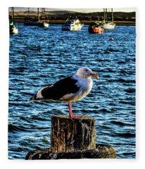 Seagull Perch Fleece Blanket
