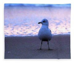 Seagull Posing Fleece Blanket