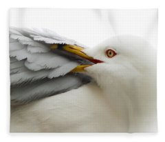Seagull Pruning His Feathers Fleece Blanket