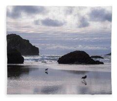 Seagull Reflections Fleece Blanket