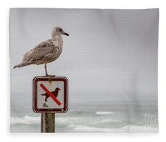 Seagull Standing On Sign And Looking At The Ocean Fleece Blanket
