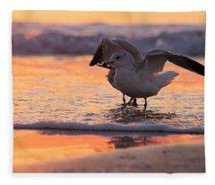 Seagull Stretch At Sunrise Fleece Blanket