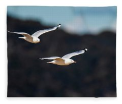 Seagulls In Flight Fleece Blanket