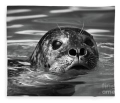 Seal In Water Fleece Blanket