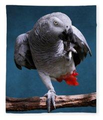 Secretive Gray Parrot Fleece Blanket