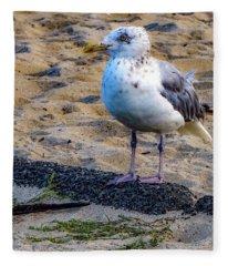 See The Gull Fleece Blanket