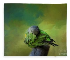 Senegal Parrot Fleece Blanket