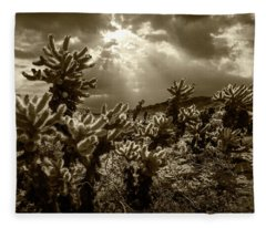 Sepia Tone Of Cholla Cactus Garden Bathed In Sunlight Fleece Blanket