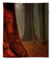 Sequoias In The Clouds Fleece Blanket