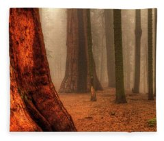 Sequoias Touching The Clouds Fleece Blanket