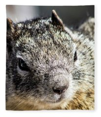 Serious Squirrel Fleece Blanket