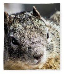 Serious Squirrel Fleece Blanket