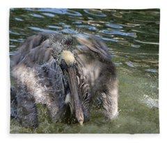 Shake It Off - Brown Pelican - Pelicanus Occidentalis Fleece Blanket
