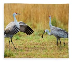 Shall We Dance Fleece Blanket