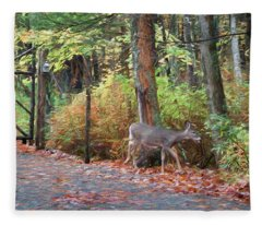 Sharing The Land - Fleece Blanket