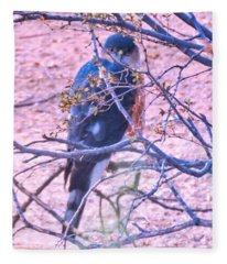 Sharp-shinned Hawk Hunting In The Desert 2 Fleece Blanket