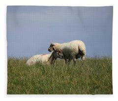 Sheep 4221 Fleece Blanket