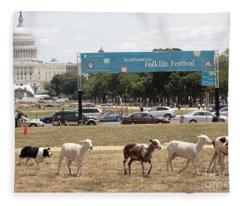 Sheep-herding In Washington Dc Fleece Blanket
