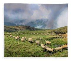 Sheep In Carphatian Mountains Fleece Blanket