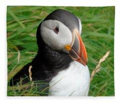 Shetland Island Puffin Fleece Blanket