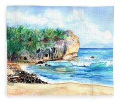 Shipwreck's Beach 4 Fleece Blanket