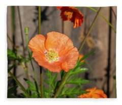 Shirley Poppy 2018-12 Fleece Blanket
