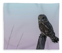 Short-eared Owl 2018-4 Fleece Blanket
