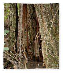 Shredded Tree Fleece Blanket