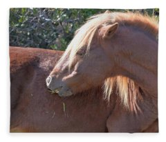Shy One - Wild Pony Of Assateague Island Fleece Blanket