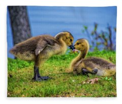 Sibling Love Fleece Blanket