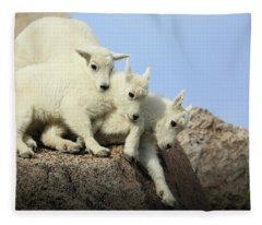 Siblings Fleece Blanket