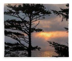Silver Point Silhouette Fleece Blanket