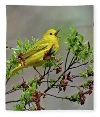 Sing A Song Fleece Blanket