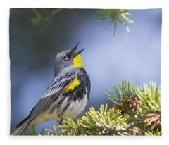 Singing Audubon's Warbler Fleece Blanket