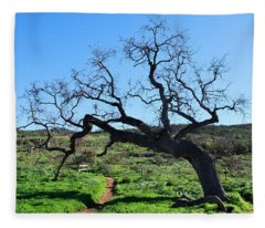 Single Tree Over Narrow Path Fleece Blanket