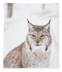 Sitting Pretty Fleece Blanket