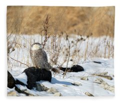 Sitting Snowy Fleece Blanket
