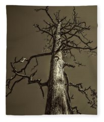 Skeletal Tree Sedona Arizona Fleece Blanket