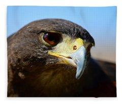Sky Dancer - Harris Hawk Fleece Blanket