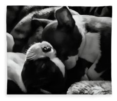 Sleeping Beauties - Boston Terriers Fleece Blanket