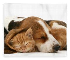 Sleepy Ginger Pals Fleece Blanket