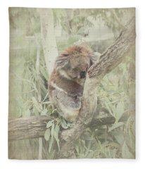 Sleepy Koala Fleece Blanket
