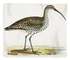 Slender Billed Curlew Fleece Blanket