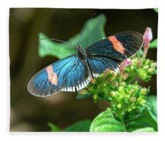 Small Black Postman Butterfly Fleece Blanket