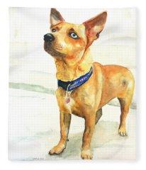 Small Short Hair Brown Dog Fleece Blanket