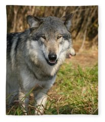 Smiling Wolf Fleece Blanket