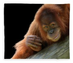 Cute Young Orangutan Fleece Blanket