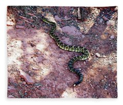 Snake - Cathedral Rock - Sedona, Arizona Fleece Blanket